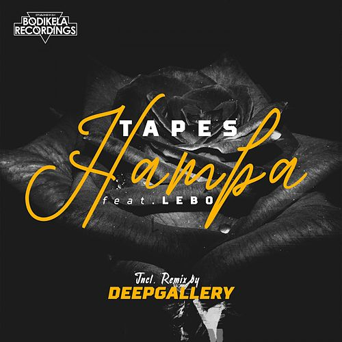Hamba by Tapes