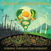 Play & Download Pushing Through the Pavement by The Polish Ambassador | Napster