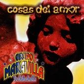 Cosas del Amor by Grupo Maravilla