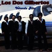 Volando Alto by Los Dos Gilbertos