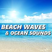 Play & Download Beach Waves & Ocean Sounds by Ocean Sounds (1) | Napster