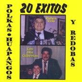 Huapangos Redobas Y Polkas by Various Artists