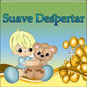 Play & Download Suave Despertar by Various Artists | Napster