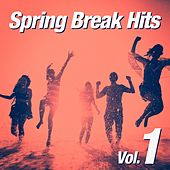 Spring Break Hits, Vol. 1 by Various Artists