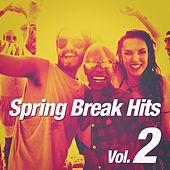 Spring Break Hits, Vol. 2 by Various Artists