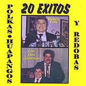 Play & Download Polkas Huapangos Y Redobas by Steve Jordan | Napster