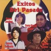 Exitos Del Pasado by Los Relampagos Del Norte