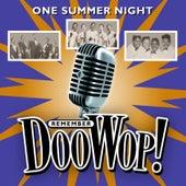 One Summer Night (Remember Doo Wop) von Various Artists