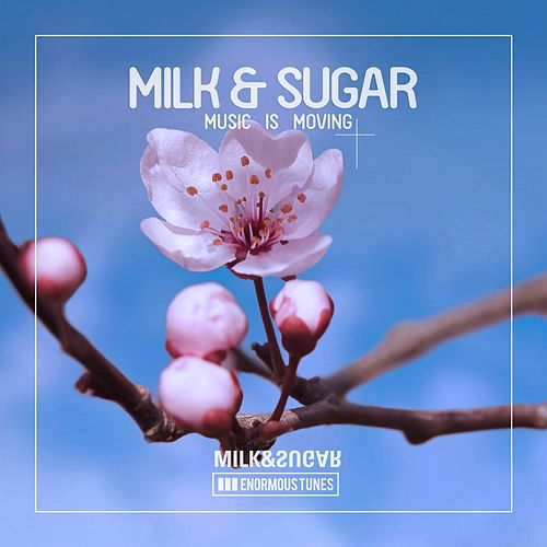 Music Is Moving by Milk & Sugar