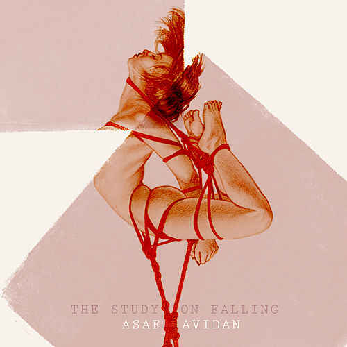 The Study On Falling de Asaf Avidan