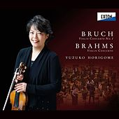 Bruch: Violin Concerto No. 1 & Brahms: Violin Concerto by Various Artists