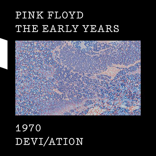 The Early Years 1970 DEVI/ATION von Pink Floyd