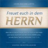 Play & Download Freuet euch in dem Herrn (Lieder zur Ehre Gottes mit Solisten, Klavier und Orchester) by Voice of Hope Music | Napster