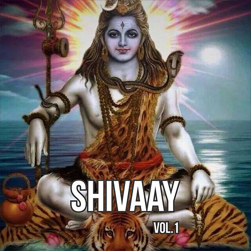 Shivaay, Vol. 1 by Anup Jalota