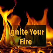 Ignite Your Fire von Various Artists