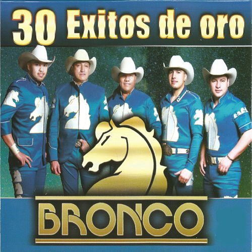 30 Éxitos de Oro, Vol. 3 by Bronco