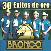 30 Éxitos de Oro, Vol. 2 by Bronco