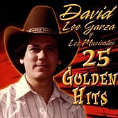 Play & Download 25 Golden Hits by David Lee Garza | Napster