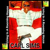 Living in a Rooming House by Carl Sims