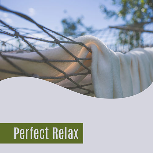 Perfect Relax – Best Music for Relaxation, Stress Relief, Nature Sounds, Soothing Melodies, Relaxing Therapy, Calmness de The Rest