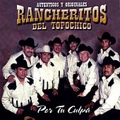 Play & Download Por Tu Culpa by Los Rancheritos Del Topo Chico | Napster