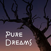 Play & Download Pure Dreams – Soft Sleep Music, Stress Relief, Peaceful Mind, Calming Melodies to Bed, Lullaby at Night by New Age | Napster
