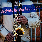 Play & Download Orchids in the Moonlight by Various Artists | Napster