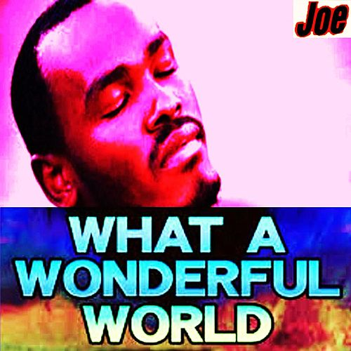 Play & Download What a Wonderful World by Joe | Napster