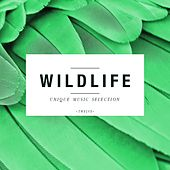Play & Download Wildlife - Unique Music Selection, Vol. 12 by Various Artists | Napster