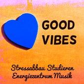 Good Vibes - Stressabbau Studieren Energiezentrum Musik für Schlafstörungen Therapie Hirnstimulation mit New Age Natur Instrumental Geräusche by Serenity Spa: Music Relaxation