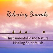 Relaxing Sounds - Instrumental Piano Nature Healing Spirit Music to Reduce Problems and Wellness Programs by Various Artists