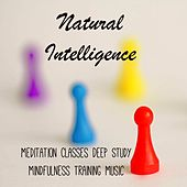 Play & Download Natural Intelligence - Meditation Classes Mindfulness Training Deep Study Music with Concentration Natural Sleep Sounds by Radio Meditation Music | Napster
