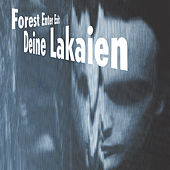 Play & Download Forest Enter Exit by Deine Lakaien | Napster