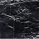 Songs That Went Tin by Sole