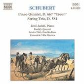 Play & Download Piano Quintet, D. 667