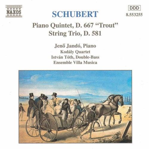 Piano Quintet, D. 667 'Trout' by Franz Schubert