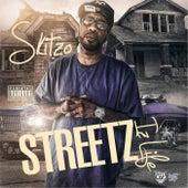 Streets Iz Life by Skitzo