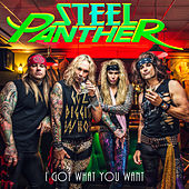 I Got What You Want von Steel Panther