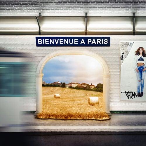 Bienvenue à Paris de Vitaa