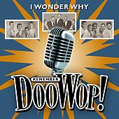 I Wonder Why (Remember Doo Wop) von Various Artists