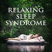 Relaxing Sleep Syndrome by Various Artists