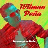Play & Download Homenaje a Bolo - En Vivo by Wilman Peña | Napster