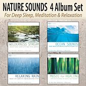 Nature Sounds 4 Album Set: Wilderness Stream, Ocean Sounds, Relaxing Rain, Music for Healing for Deep Sleep, Meditation, & Relaxation by Robbins Island Music Group