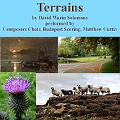 David Warin Solomons: Terrains by Various Artists