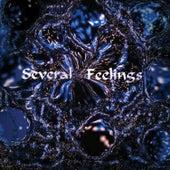 Several Feelings by SoulsilenS