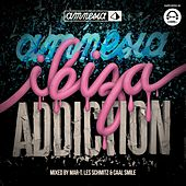 Amnesia Ibiza Addiction (Mixed by Mar-T, Les Schmitz & Caal Smile) by Various Artists