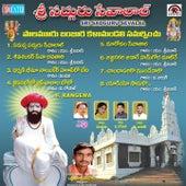Sri Sadguru Sevalal by Various Artists
