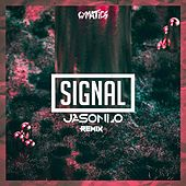 Signal (Jasonlo Remix) by Cymatics