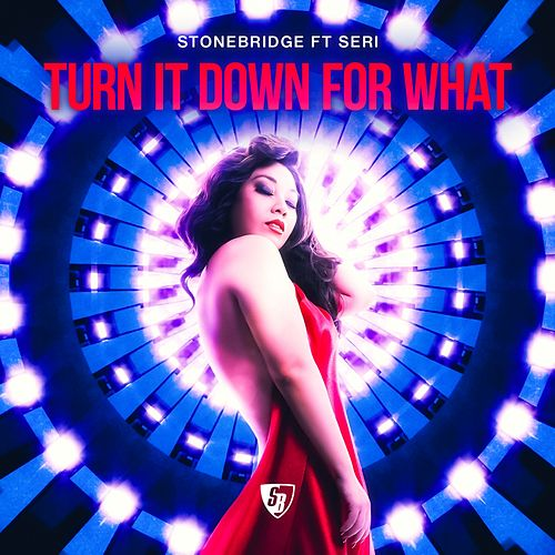 Turn It Down for What by Stonebridge