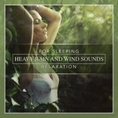 Play & Download Heavy Rain and Wind Sounds for Sleeping & Relaxation by Nature Sounds (1) | Napster